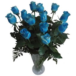 13 trandafiri albastri