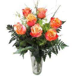 7 trandafiri portocalii