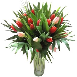 O iubire in floare