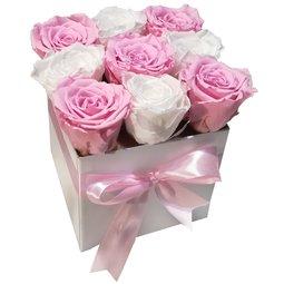 Simetrie in culori - alb & roz