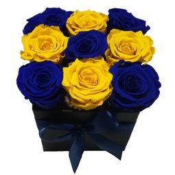 Simetrie in culori - albastru & galben
