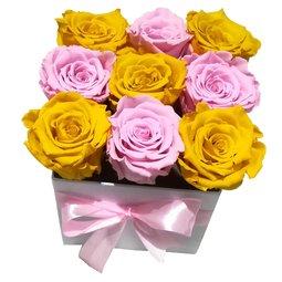 Simetrie in culori - galben & roz
