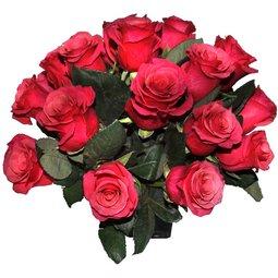 Trandafiri roz in vaza patrata