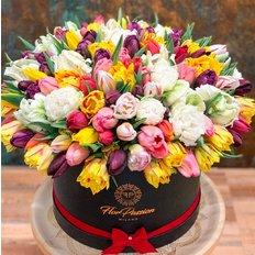 Amazing Tulips FlorPassion Box