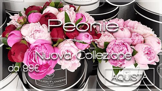 Peonie Consegna Fiori Milano