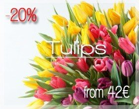 Tulips Bouquet in Milan