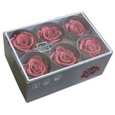 Cherry Blossom Preserved Roses, 6pcs
