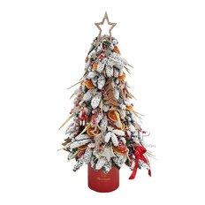 Albero Natale Artigianale in Scatola FlorPassion | Fiori Online