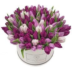 100 Tulipani Million Flowers | Consegna Fiori Monza e Milano