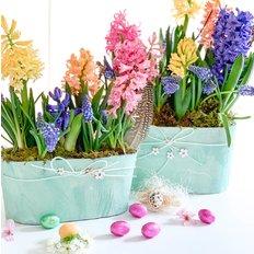 Giacinti e Uovo di Pasqua