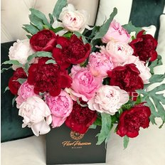 Peonies Bloom Box