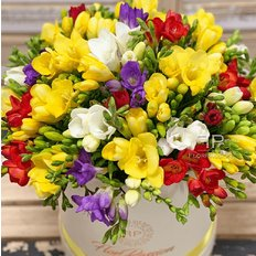 Pretty Freesia FlorPassion Box