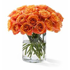 Rose Arancio