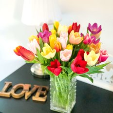 Mixed Tulips Flowers Delivery | FlorPassion Milan Best Local Florist