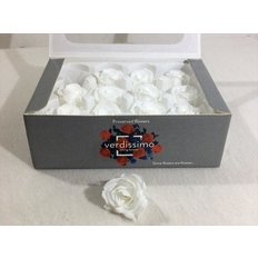 White Preserved Mini Roses, 12pcs