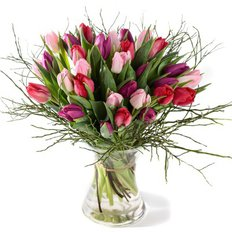 Colorful Tulips | Order Flowers Online in Milan and Monza