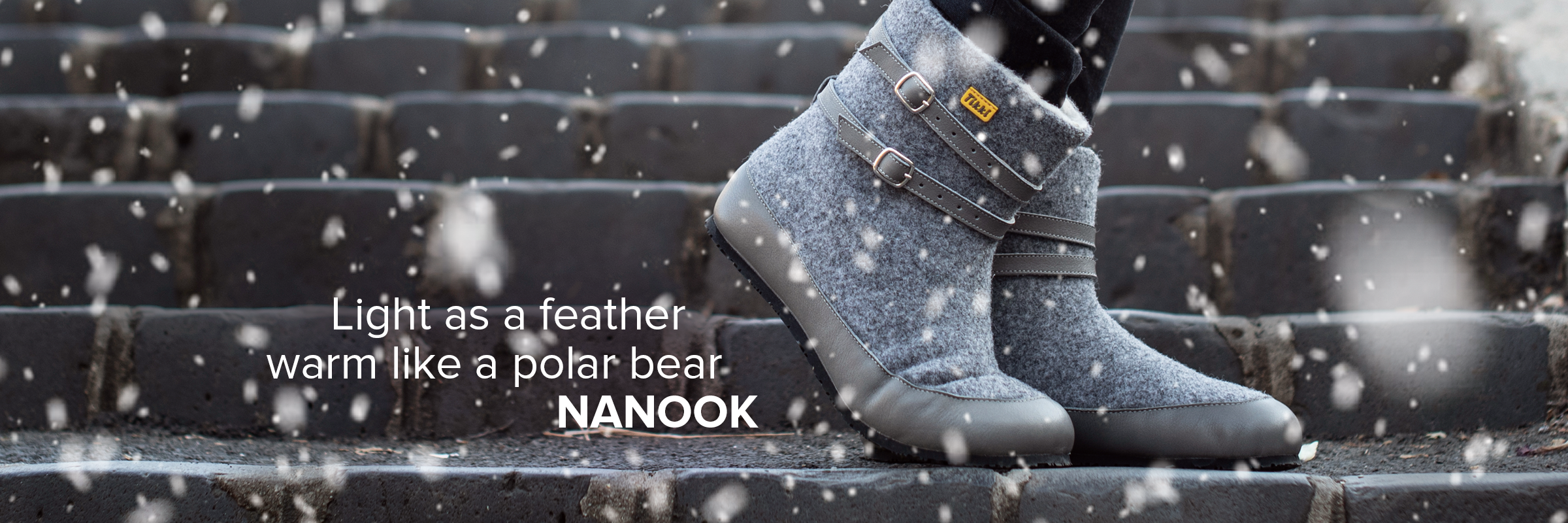 Tikki Nanook in winter 02